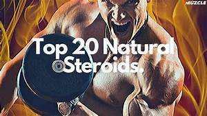 Top 10 Natural Steroids Supplements Of 2020  Reviewed