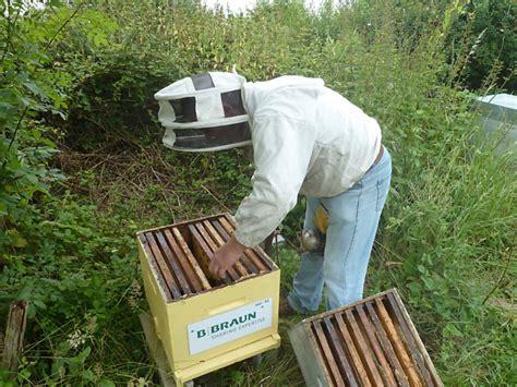 chambres implantables l 39 entreprise b braun parraine des abeilles