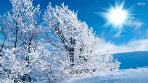 Winter Wallpapers  Best Wallpapers