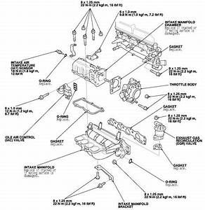 95 honda accord egr valve wiring diagram o wiring diagram With 1990 honda civic engine diagram besides 1996 honda accord valve cover