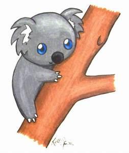 12 best Koalas images on Pinterest   Koala bears, Koalas ...