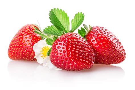 le journal des femmes cuisine tout sur la fraise la choisir la cuisiner la conserver