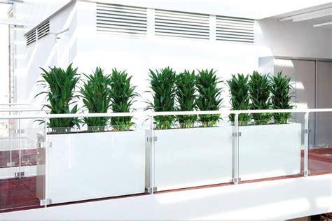 Eisen Büro Und Objektbegrünung  Raumteiler Mit Pflanzen