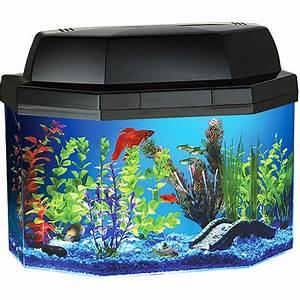 20 Gallon Fish Tank Lid With Light Aquatics Animal Alley