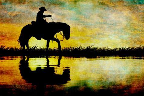 horse silhouette sunset  stock photo public domain