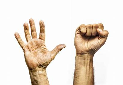 Fist Hand Open Hands Palm Clenched Worker