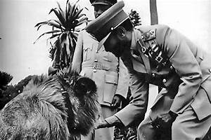Emperor Haile Selassie I with a Lion | His Imperial ...