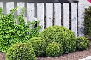 Sichtschutz Im Garten : z une sichtschutz garten lauterwasser gartenbau ~ A.2002-acura-tl-radio.info Haus und Dekorationen