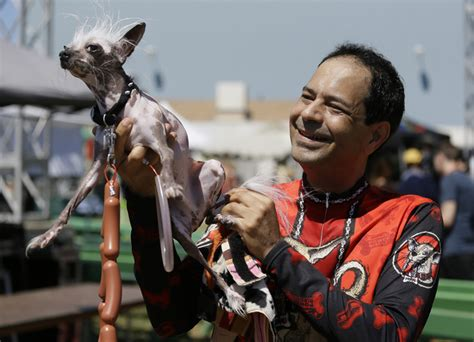 photos world s ugliest dog contest 2017 gallery