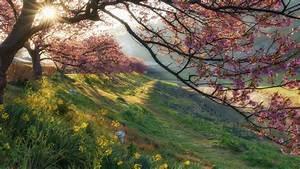 Morning, Sunrise, Minami, Izu, Shizuoka, Japan, Smartphone, 4k, Hd