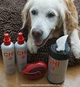 full image for petsmart dog beds brindle orthopedic memory With petsmart extra large dog beds