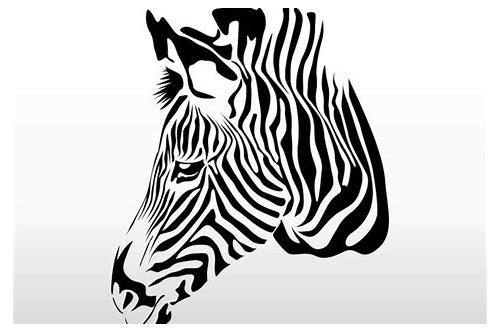 baixar gratuito do vector de zebras