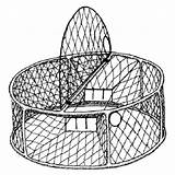 Crab Dungeness Trap Stainless Steel Figure Fishing Circular Relatives California Close Its Gov Marine Wildlife sketch template