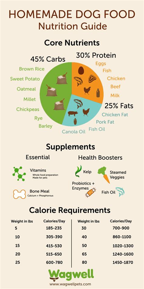 dog food nutrition infographics
