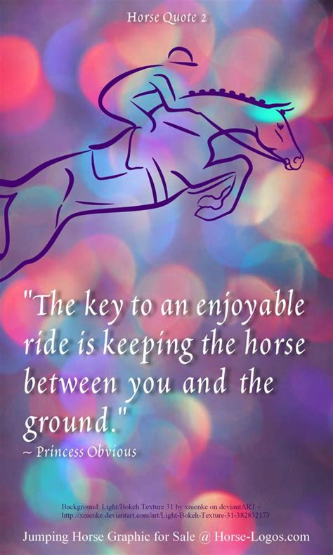 horse jumping quotes  pinterest horse quotes