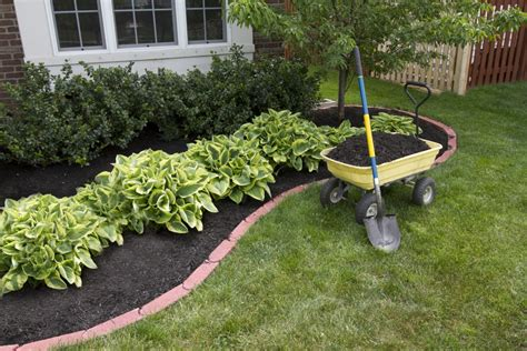 cheap landscaping ideas blogtama information ideas for landscaping along driveway