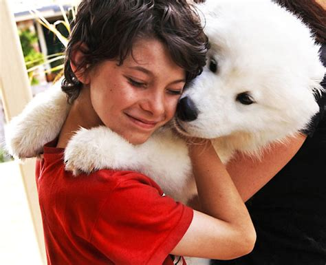 26 Dogs Hugging Their Humans