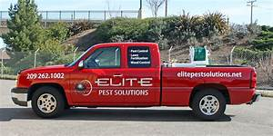 elite pest solutions truck lettering visual horizons With truck lettering