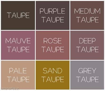 what color goes with taupe how to use taupe color in your home decor homesthetics