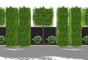 sichtschutz hpl hecke am laufenden meter spalierbaume With garten planen mit balkon sichtschutz folie