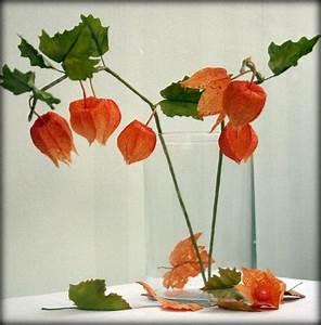 Deko Ideen Herbst : herbst deko ideen mit physalis glas vase herbst ~ Lizthompson.info Haus und Dekorationen