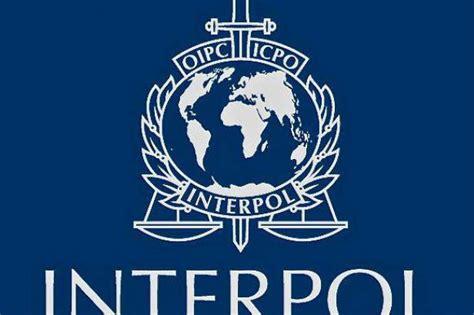 si鑒e interpol lamezia oggi criminalita polizia confisca beni e arma decisiva per interpol