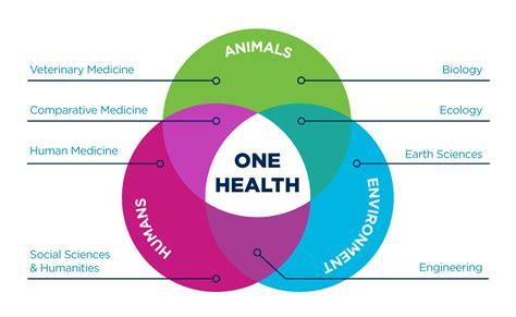 unique  health collaborations uc davis