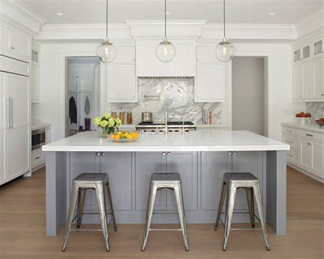 gray  white kitchens houzz