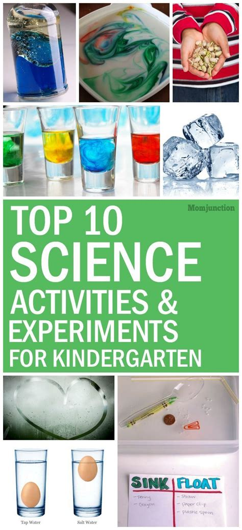 25 best ideas about kindergarten science on 995 | d03f0630036eb50826fcc894e7a5e569