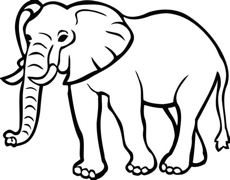 elephant clipart black and white free clipart of an elephant