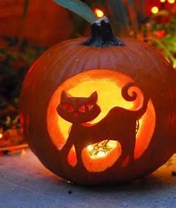 Best, Pumpkin, Carving, Ideas, The, Internet, Has, Ever, Seen