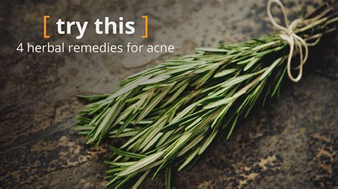 herbs  acne   facts