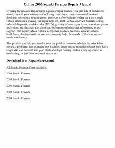 2006 Suzuki Forenza Problems