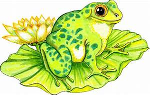 Free Frog on Lilly Pad Graphic - Transparent PNG files and ...