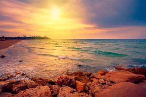 israels  beaches  sunsets   grapevine