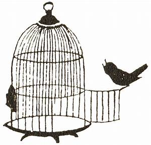 Antique Graphics Wednesday - Bird and Birdcage - Knick of Time