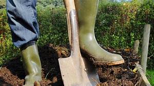 Gartenarbeit Im Februar : gartenarbeit das muss im februar im garten erledigt werden haus garten ~ Frokenaadalensverden.com Haus und Dekorationen