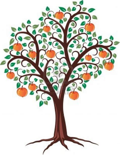 apple tree with roots drawing 17 best images about 193 rvores trees on how to