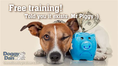 Free Dog Training Online? You Bet!  The Online Dog Trainer. Hard Drive Crash Data Recovery. Psychology Masters Degree Legal Attorney Jobs. Health Informatics Certification. Park City Carpet Cleaning Happily Never After. Allstate Car Insurance Discounts. Garage Spring Repair Cost Oregon Rehab Center. Us Stock Market Summary Server Moving Company. Benjamin Rush Arts Academy Telus Cell Phones