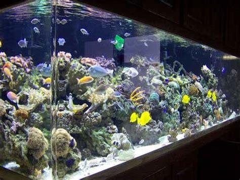 aquarium d eau sal 233 e r 233 servoirs de poissons accessoires id de produit 125522370 alibaba