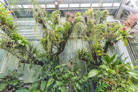 Botanischer Garten Erlangen by Botanischer Garten Erlangen Botanischer Garten