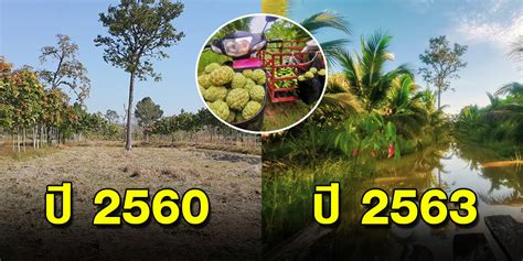 3 ปี ที่เปลี่ยนแปลง เกษตรผสมผสาน ปั้นดินให้กินได้