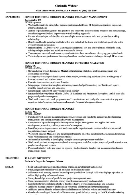 Technical Project Manager Resume by Senior Technical Project Manager Resume Sles Velvet