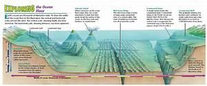 Oceans And Their Coastal Margins