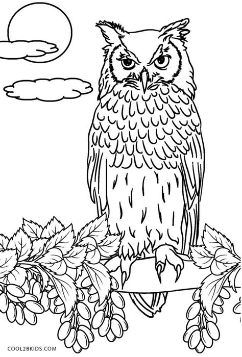 printable owl coloring pages  kids coolbkids