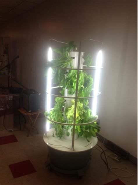sielsie aquaponic tower system