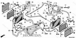 Honda Motorcycle 2006 Oem Parts Diagram For Radiator