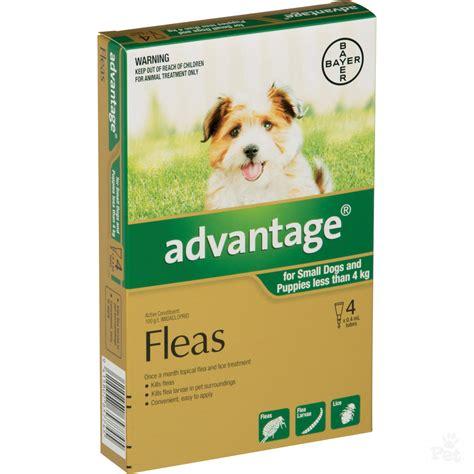 advantage dog flea treatment