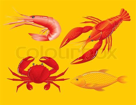 seafood shrimp crawfish crab  fish stock vector