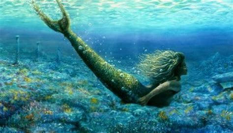government denies existence  mermaids foreign students news